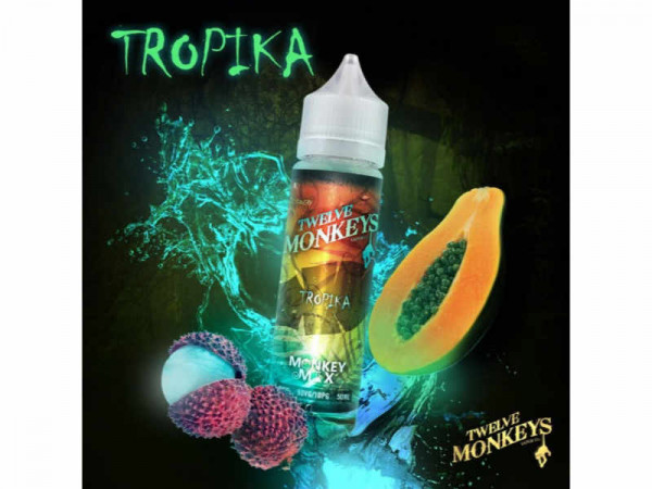 Twelve-Monkeys-Tropika